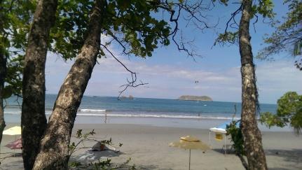 Beach w: trees